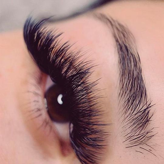 D Curl eyelashes extension